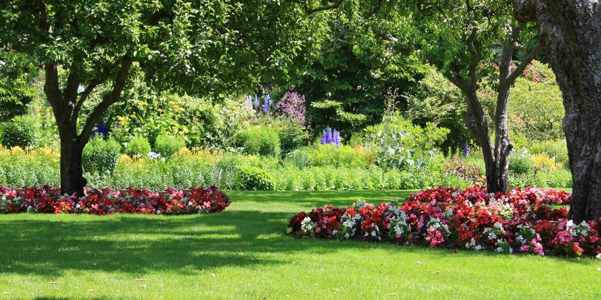 eco vriendelijke tuin